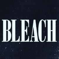 Bleach photo